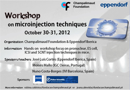 Hands-on workshop on microinjection techniques in Lisbon, 30-31 Ocotber 2012