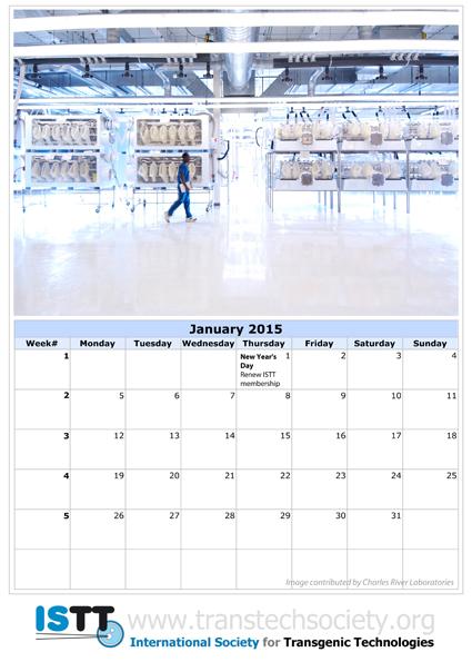 Download a free copy of the 2015 ISTT Calendar