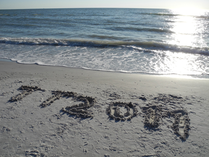 TT2011, 10th Transgenic Technology Meeting, St Pete Beach, Florida, USA