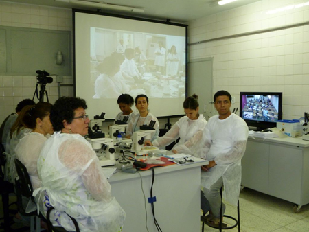 Participants at the cryopreservation course (local and through videoconference)